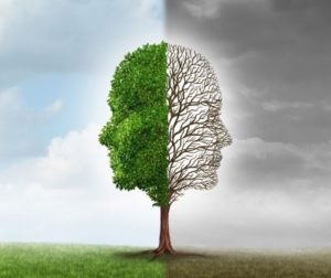 Racionalno emotivno bihejvioralna terapija